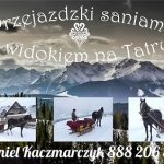 Przejażdżki saniami z widokiem na Tatry