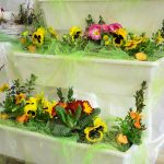 Zbiórka na prąd, kwiaty i obsługę zakrystii